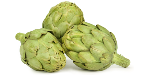 Frosts cause damage to artichokes throughout Spain