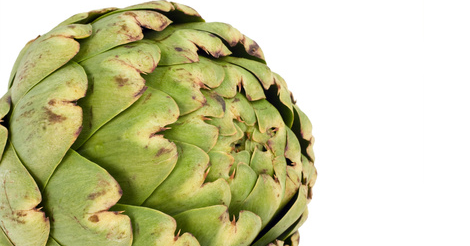 Orihuela will host the 10th International Symposium of the Artichoke