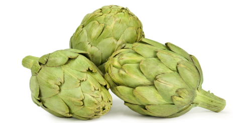The new Council of the Artichoke of Tudela has as main objective to promote its products among the consumers